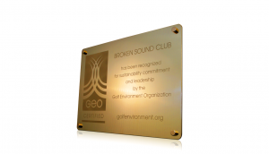 GEO Brass Plaque