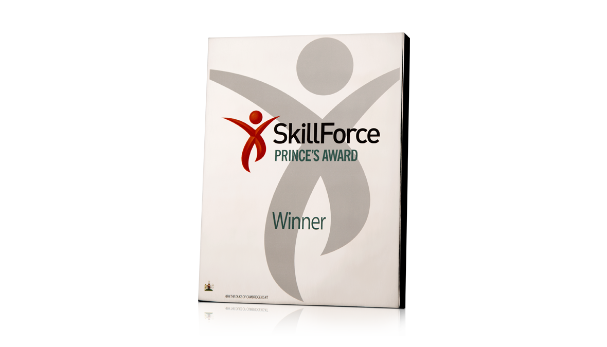 Skillforce Princes Award Aluminium
