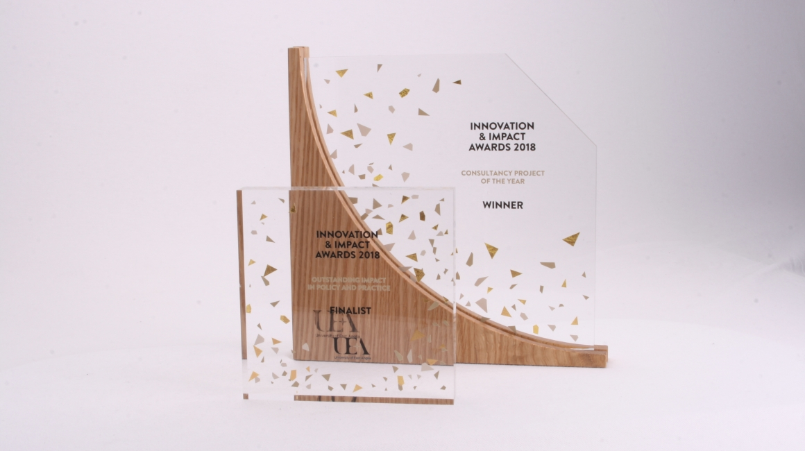 Sustainable Bespoke Award